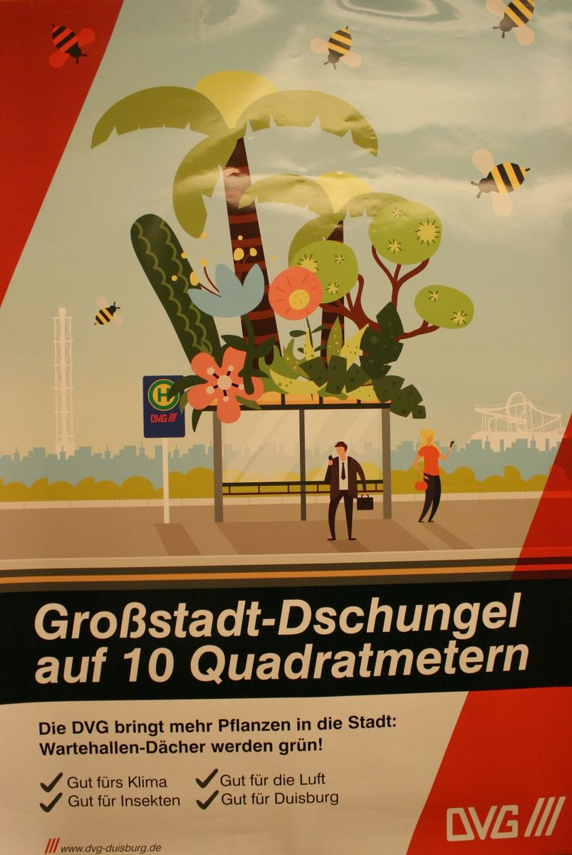 Grossstadt_Dschungel